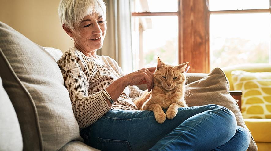 Senior woman petting her cat.